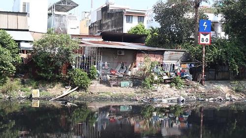 TP. HCM: Zika tăng nhanh do môi trường ô nhiễm nặng - Hình 1