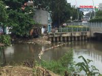 TP.HCM: Số ca nhiễm virus Zika tăng lên 52 người
