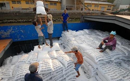 Xuất khẩu gạo của việt Nam giảm kỷ lục trong gần 10 năm qua - Hình 1