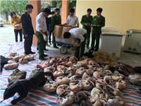 Thanh Hóa: Bắt đối tượng chuyên mua bán động vật hoang dã ướp lạnh