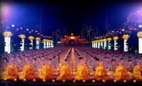 Việt Nam lọt Top khoảnh khắc đẹp của thế giới