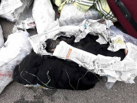 Hà Tĩnh: Khởi tố, bắt 3 đối tượng vụ vận chuyển, buôn bán 12 cá thể vọoc