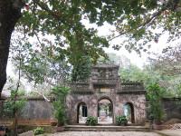 Đà Nẵng: Thêm 7 cây di sản tại danh thắng Ngũ Hành Sơn được công nhận