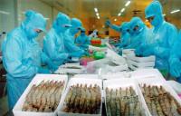 Nhiều doanh nghiệp xuất khẩu thủy sản bị lừa đảo hàng trăm ngàn USD