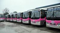 Hải Phòng: Chấp thuận mở tuyến vận tải hành khách nội tỉnh bằng xe buýt