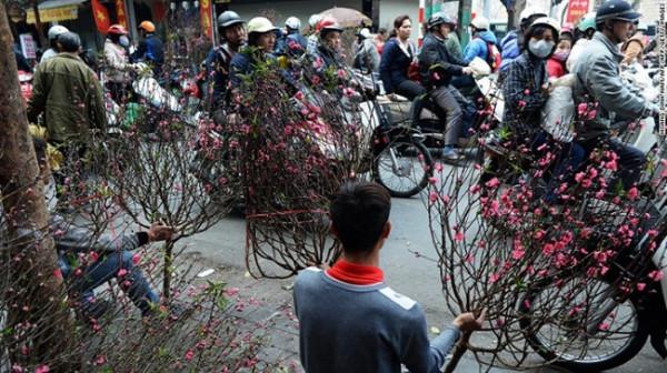CNN chọn chợ hoa Quảng Bá là 1 trong 15 nơi tuyệt nhất để đón Tết