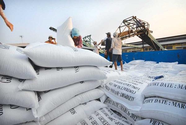 Gần 956.000 tấn gạo tồn kho trong tháng đầu năm - Hình 1