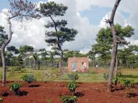 """Tây Ninh: Vẫn còn 217 ha đất lâm nghiệp bị cấp """"nhầm"""" giấy chứng nhận quyền sử dụng đất"""