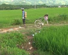 Hướng dẫn người nông dân dùng thuốc bảo vệ thực vật qua đĩa CD