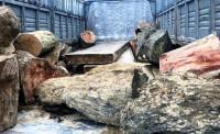 Quảng Nam: 2 xe vận chuyển gỗ lậu bị CSGT phát hiện và bắt giữ