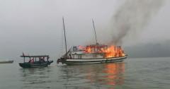 Quảng Ninh: Chấm dứt hoạt động 6 tàu du lịch trên Vịnh Hạ Long