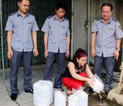Hà Tĩnh: Thu giữ, tiêu hủy gần 500 lít rượu không rõ nguồn gốc