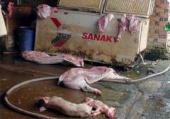 Đồng Nai: Phát hiện lò chuyên giết mổ heo bệnh số lượng lớn