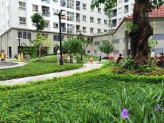Capital House công khai phương pháp tính giá căn hộ EcoHome 1