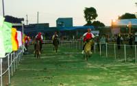 Kết thúc Giải Đua ngựa Gia Lai mở rộng 2017