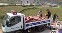 Cao Bằng: Tiêu hủy hơn 4,2 tấn thịt lợn không đủ tiêu chuẩn an toàn vệ sinh thực phẩm