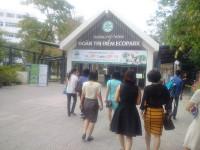 Vụ VSATTP tại Trường Đoàn Thị Điểm Ecopark: Cần làm rõ trách nhiệm của người đứng đầu