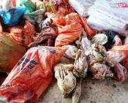 Hà Tĩnh: Bắt giữ hơn 1 tấn thực phẩm bẩn