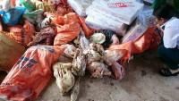 Hà Tĩnh: Bắt giữ hơn 2 tấn thực phẩm bẩn, bốc mùi ôi thiu