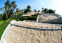 Xây dựng thương hiệu nông sản miền núi và hải đảo: Những rào cản cần khắc phục