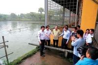 Công ty Cổ phần Supe PP&HC Lâm Thao: Quan tâm công tác bảo vệ môi trường