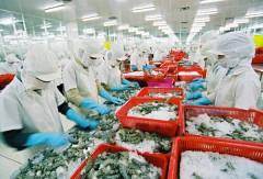 Phê duyệt đề án nâng cao năng lực cạnh tranh của ngành thủy sản