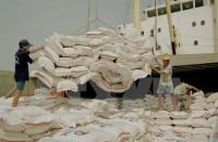 Việt Nam sẽ cung cấp cho Bangladesh 1 triệu tấn gạo mỗi năm