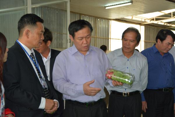 Phó Thủ tướng Vương Đình Huệ thăm mô hình SX ứng dụng NNCN cao tại Lâm Đồng - Hình 1