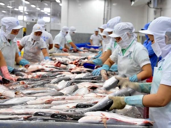 Dự báo giá cá tra xuất khẩu sang Mỹ vẫn sẽ tăng trong vài tháng tới - Hình 1