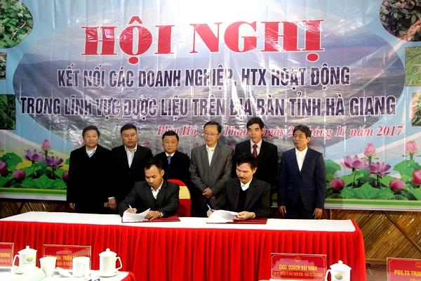 Công ty CP Sao Thái Dương: Tham gia xúc tiến đầu tư tại Hà Giang 2017 - Hình 4
