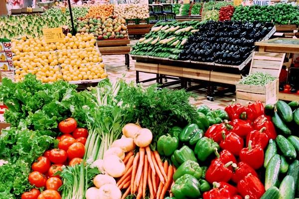 Phát triển nông nghiệp bền vững quan trọng nhất là quản trị sau đầu tư - Hình 2