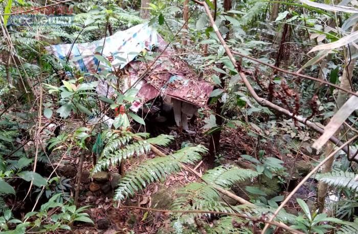 Lâm Đồng: Phát hiện thi thể người đàn ông tử vong tử vong giữa rừng - Hình 1