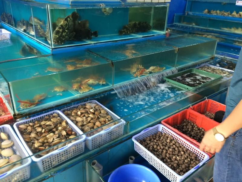 Khai trương nhà hàng Hương Biển tại Kỳ Anh - Hà Tĩnh - Hình 9