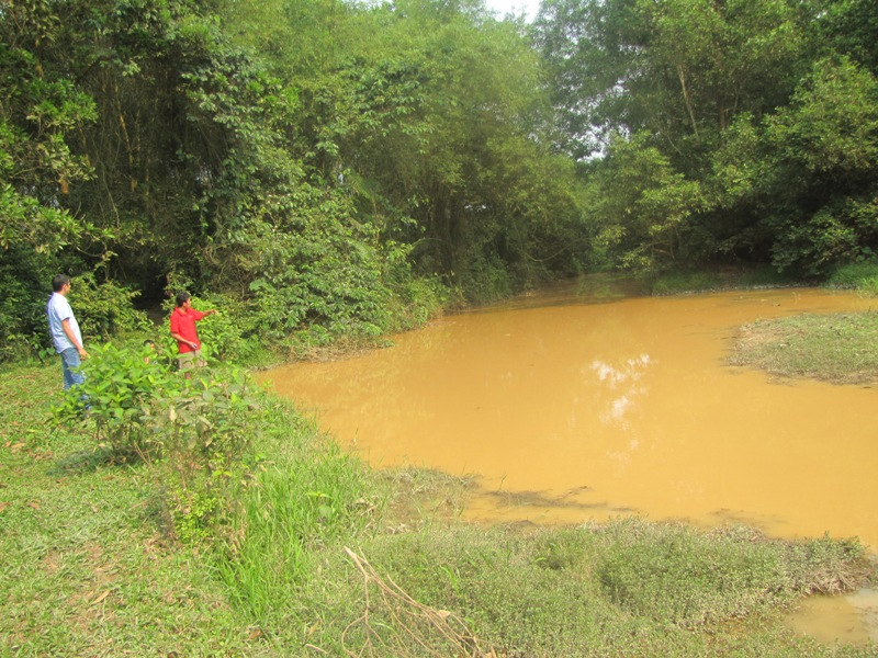 Dự án nuôi bò ngàn tỷ ở Hà Tĩnh 'chết yểu': Cần truy cứu trách nhiệm những người liên quan - Hình 4