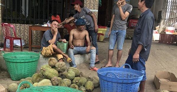 Lâm Đồng: Thông tin chính thức về việc thương lái đua nhau thu mua hạt sầu riêng - Hình 1