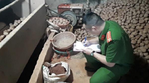Lâm Đồng: 578 tấn khoai tây Trung Quốc nhập về trong 3 tháng - Hình 1