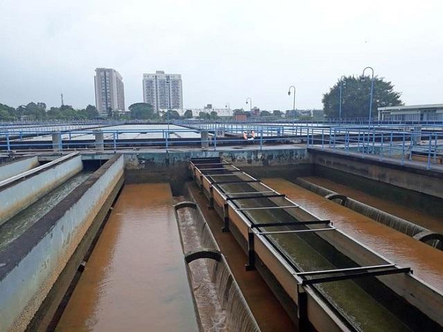 Nguồn nước từ các sông Đồng Nai, Sài Gòn ngày càng ô nhiễm - Hình 2