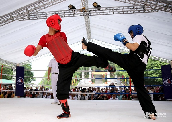 Nghệ An: Khai mạc giải vô địch võ cổ truyền các lứa tuổi năm 2018 - Hình 6