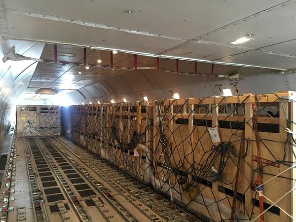 200 cô bò sữa hữu cơ 'cưỡi' máy bay từ Úc về Việt Nam - Hình 2