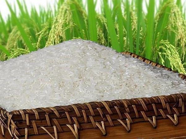 Thương hiệu gạo Việt Nam được bảo hộ trên toàn cầu - Hình 1