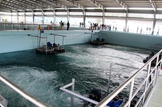 Bình Dương: Khánh thành nhà máy xử lý nước thải sinh hoạt trị giá hơn 100 triệu USD - Hình 1