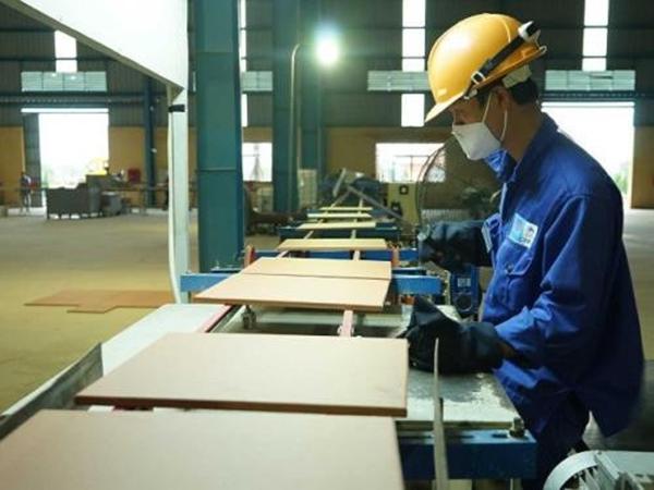 Bộ Xây dựng đấu giá công khai 80,58 triệu cổ phần tại Viglacera - Hình 1