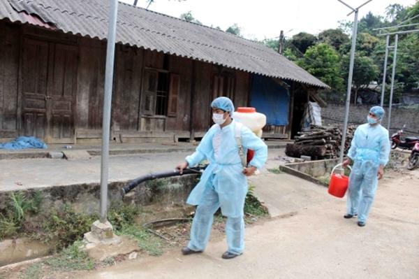 Cục Thú y lên tiếng về thông tin FAO khuyến nghị VN ban bố tình trạng khẩn cấp dịch tả lợn châu Phi - Hình 1
