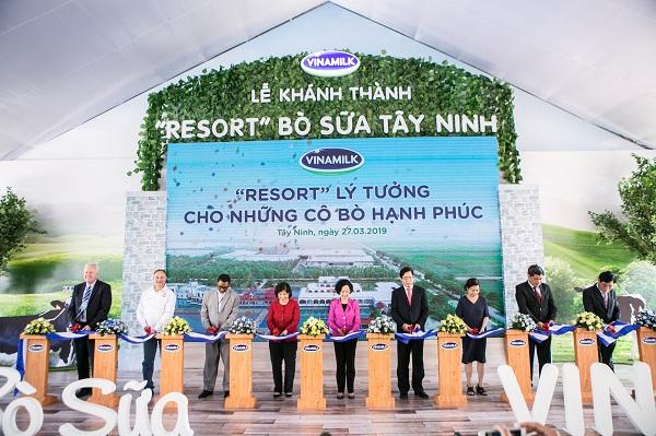 """'Resort"""" bò sữa Vinamilk Tây Ninh: Ngôi nhà lý tưởng của những cô bò hạnh phúc - Hình 1"""