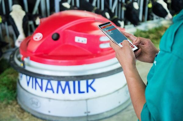 """'Resort"""" bò sữa Vinamilk Tây Ninh: Ngôi nhà lý tưởng của những cô bò hạnh phúc - Hình 7"""