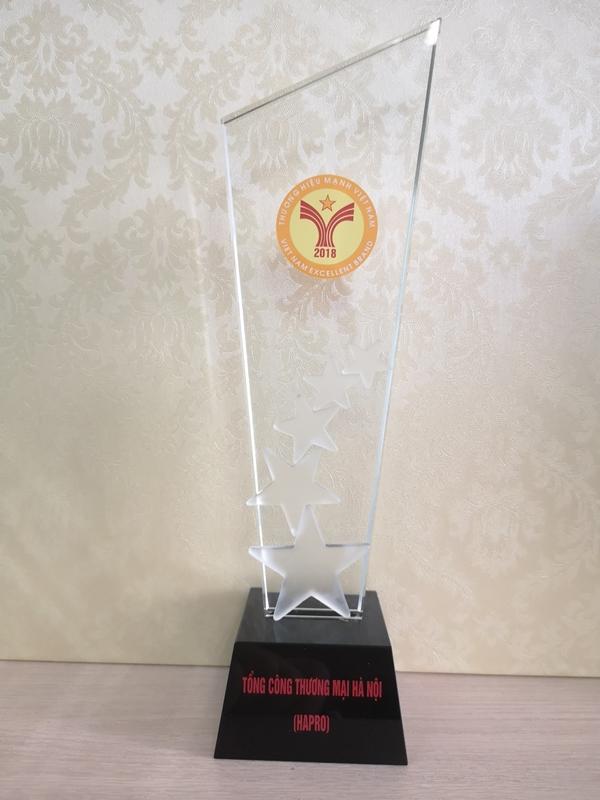 Hapro vinh dự được đón nhận giải thưởng 'Thương hiệu Mạnh Việt Nam' - Hình 2