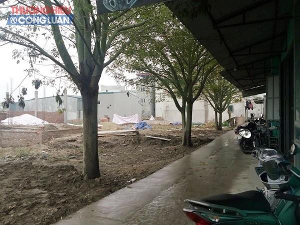 Xây dựng trái phép trên đất NN tại Hoài Đức (Hà Nội): Trách nhiệm thuộc về Chủ tịch thị trấn Trạm Trôi - Hình 2