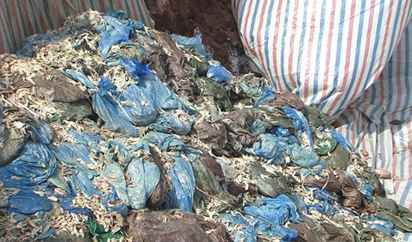 Điện Biên: Tiêu hủy 58 tấn chân gà đông lạnh - Hình 1