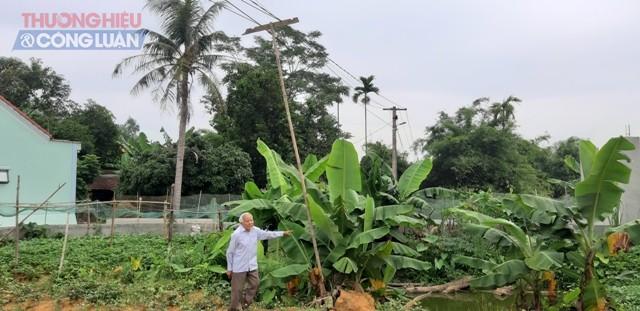 """Nghệ An: Điện lực huyện Yên Thành """"bỏ quên"""" quyền lợi người dân suốt nhiều năm - Hình 1"""