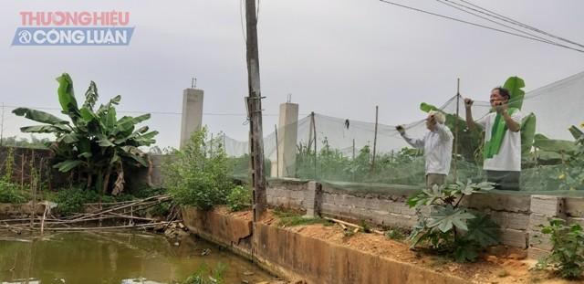 """Nghệ An: Điện lực huyện Yên Thành """"bỏ quên"""" quyền lợi người dân suốt nhiều năm - Hình 5"""